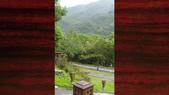 529 花東縱谷林田山:00107花東縱谷林田山古典吉他老師施夢濤吉他古典吉他教學.jpg
