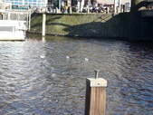 648荷蘭阿姆斯特丹運河2013全集760p:706阿姆斯特丹運河全集 施夢濤.jpg