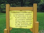 534 武陵農場 櫻花鉤吻鮭 七家灣溪:00160武陵農場櫻花鉤吻鮭七家灣溪.jpg