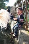[兒童攝影] 5歲棠棠的異想世界 :IMG_3250.jpg