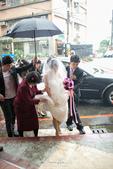 20121117 佳行+億珊 結婚喜宴:IMG_1363.jpg