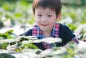 [兒童攝影] 5歲棠棠的異想世界 :IMG_2757.jpg