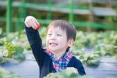 [兒童攝影] 5歲棠棠的異想世界 :IMG_2762.jpg