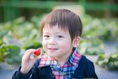 [兒童攝影] 5歲棠棠的異想世界 :IMG_2769.jpg