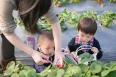 [兒童攝影] 5歲棠棠的異想世界 :IMG_2787.jpg