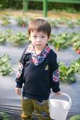 [兒童攝影] 5歲棠棠的異想世界 :IMG_2792.jpg