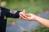 [兒童攝影] 5歲棠棠的異想世界 :IMG_2826.jpg