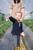 [兒童攝影] 5歲棠棠的異想世界 :IMG_2872.jpg