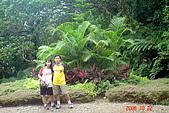 061022-宜蘭仁山植物園:DSC04927