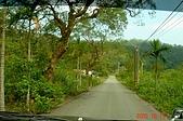 051015-武陵農場與力行產業道路:出水溪林道