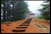 120126- 大雪山森林遊樂區:IMG_1238.JPG