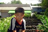 061022-宜蘭仁山植物園:DSC04937