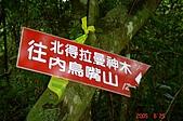 050625-水田林道支線:調整大小DSC01604