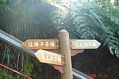 061111-南投梯子吊橋:DSC05042