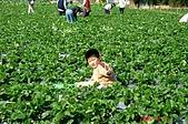 051203 大湖溫泉農場:DSC02865