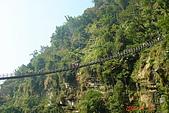 061111-南投梯子吊橋:上看梯子吊橋