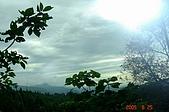 050625-水田林道支線:調整大小DSC01597