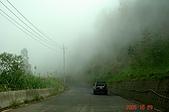 051029-杉林溪迷霧森林:沿路山嵐由上飄來卻不影響行車,真是美麗啊!