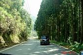 051029-杉林溪迷霧森林:經過龍鳳峽,留龍頭後就到餐廳囉!
