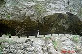 061028-砂卡噹步道與天長隧道:上看步道