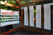 2011年士林官邸菊花展:士林官邸菊花展014.JPG