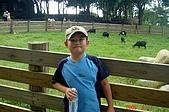 050807-飛牛牧場與大草原:DSC02089