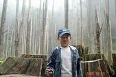 051029-杉林溪迷霧森林:DSC02650