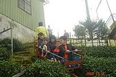 061111-南投梯子吊橋:DSC05081