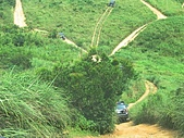 050703-硬漢嶺傘兵坑一日遊:路線很多,自己挑