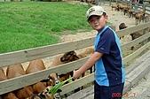 050807-飛牛牧場與大草原:DSC02094