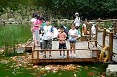 060527-九族文化村:還有餵魚區