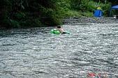 050903-桶後林道:溪流中的一隻龜