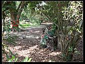2010-12-05屏東回憶之旅:P1060051.jpg