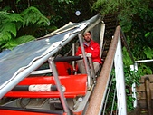 Monkey was in Sydney:DSC09996.JPG
