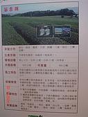 台茶博覽會in華山-魏Sir.帶:DSC03625