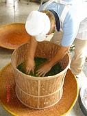 台茶博覽會in華山-魏Sir.帶:DSC03647
