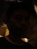 Monkey was in Sydney:DSC00068.JPG
