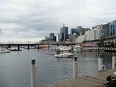 Monkey was in Sydney:DSC09770.JPG
