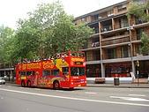 Monkey was in Sydney:DSC09777.JPG