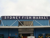 Monkey was in Sydney:DSC09780.JPG