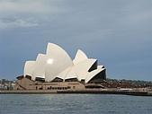 Monkey was in Sydney:DSC09890.JPG