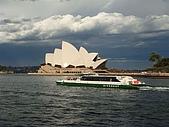 Monkey was in Sydney:DSC09970.JPG