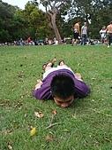 Monkey was in Sydney:DSC09709.JPG