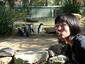 嬉梨~耍寶三姐妹圍繞三寶:DSC03843.JPG