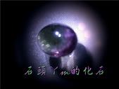 網誌用的圖片:DSCN1271~1.jpg