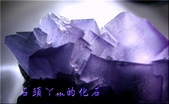 網誌用的圖片:DSCN1634~1.jpg