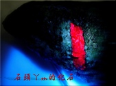 網誌用的圖片:DSCN1617~1.jpg