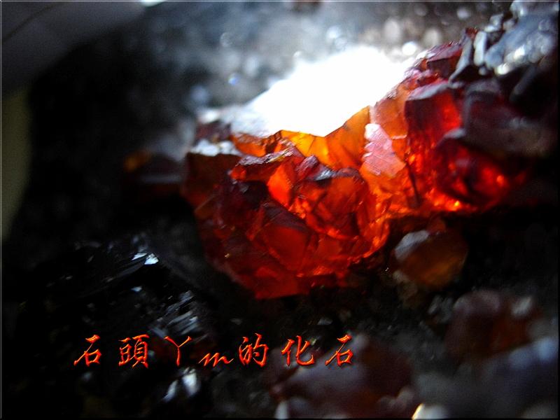 網誌用的圖片:DSCN1646~1.jpg