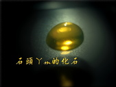 網誌用的圖片:DSCN1481~1.jpg