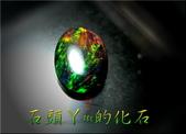 網誌用的圖片:DSCN0595~1.jpg